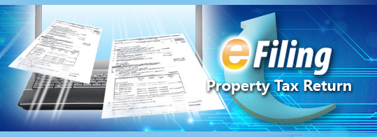Property Tax Return